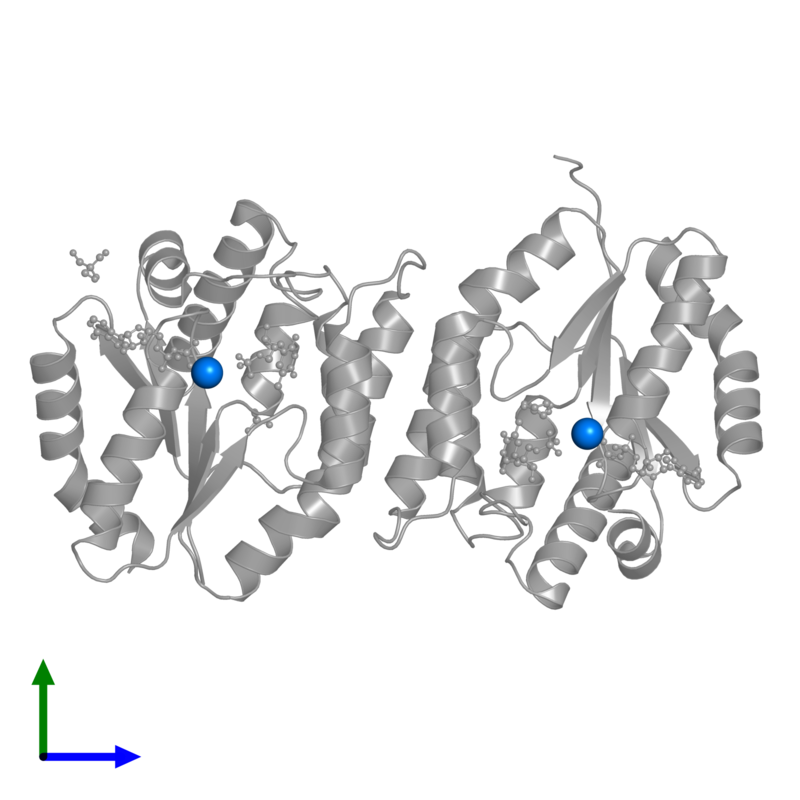 <div class='caption-body'>PDB entry 4edh contains 2 copies of MAGNESIUM ION in assembly 1. This small molecule is highlighted and viewed from the front.</div>