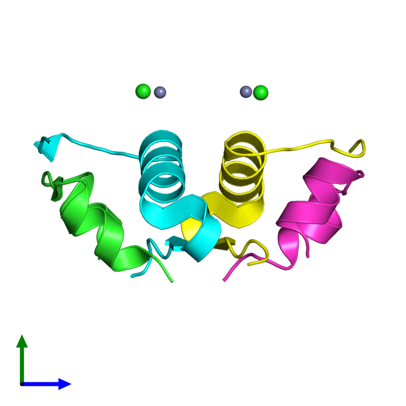 <div class='caption-body'><ul class ='image_legend_ul'>The deposited structure of PDB entry 4ex1 coloured by chain and viewed from the side. The entry contains: <li class ='image_legend_li'>2 copies of Insulin A chain</li><li class ='image_legend_li'>2 copies of Insulin B chain</li><li class ='image_legend_li'>2 non-polymeric entities<ul class ='image_legend_ul'><li class ='image_legend_li'>2 copies of ZINC ION</li><li class ='image_legend_li'>2 copies of CHLORIDE ION</li></ul></li></div>