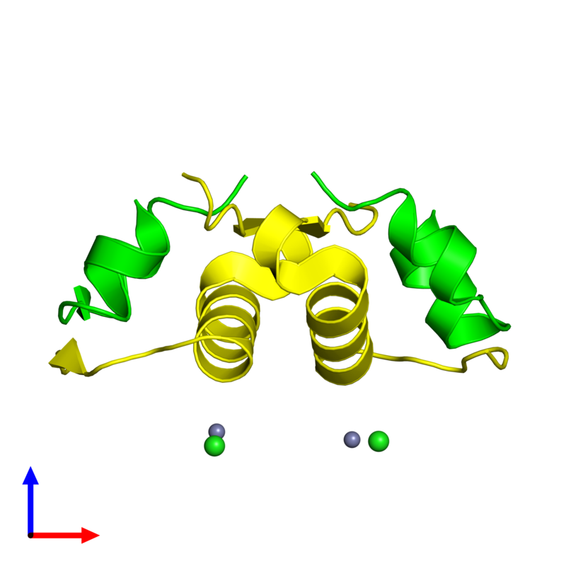 <div class='caption-body'><ul class ='image_legend_ul'>The deposited structure of PDB entry 4f0o coloured by chemically distinct molecules and viewed from the side. The entry contains: <li class ='image_legend_li'>2 copies of Insulin A chain</li><li class ='image_legend_li'>2 copies of Insulin B chain</li><li class ='image_legend_li'>2 non-polymeric entities<ul class ='image_legend_ul'><li class ='image_legend_li'>2 copies of ZINC ION</li><li class ='image_legend_li'>2 copies of CHLORIDE ION</li></ul></li></div>