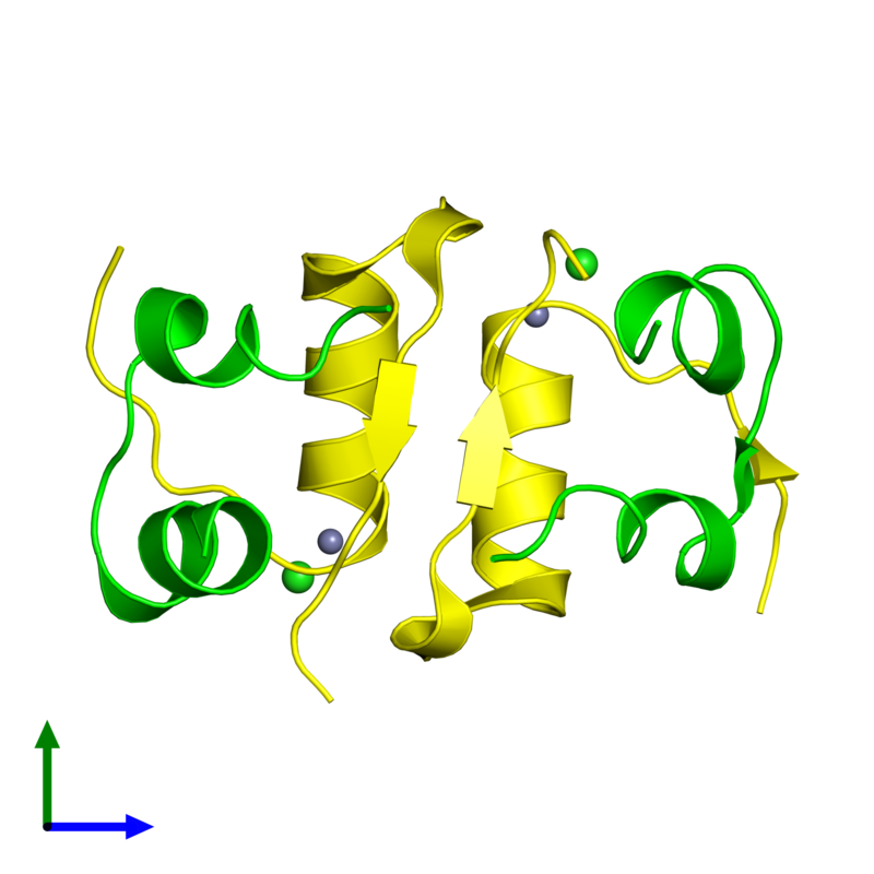 <div class='caption-body'><ul class ='image_legend_ul'>The deposited structure of PDB entry 4f1a coloured by chemically distinct molecules and viewed from the front. The entry contains: <li class ='image_legend_li'>2 copies of Insulin A chain</li><li class ='image_legend_li'>2 copies of Insulin B chain</li><li class ='image_legend_li'>2 non-polymeric entities<ul class ='image_legend_ul'><li class ='image_legend_li'>2 copies of ZINC ION</li><li class ='image_legend_li'>2 copies of CHLORIDE ION</li></ul></li></div>