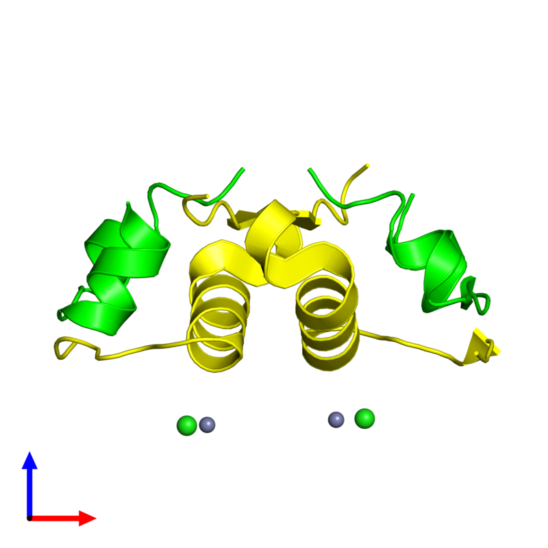 <div class='caption-body'><ul class ='image_legend_ul'>The deposited structure of PDB entry 4f1a coloured by chemically distinct molecules and viewed from the side. The entry contains: <li class ='image_legend_li'>2 copies of Insulin A chain</li><li class ='image_legend_li'>2 copies of Insulin B chain</li><li class ='image_legend_li'>2 non-polymeric entities<ul class ='image_legend_ul'><li class ='image_legend_li'>2 copies of ZINC ION</li><li class ='image_legend_li'>2 copies of CHLORIDE ION</li></ul></li></div>