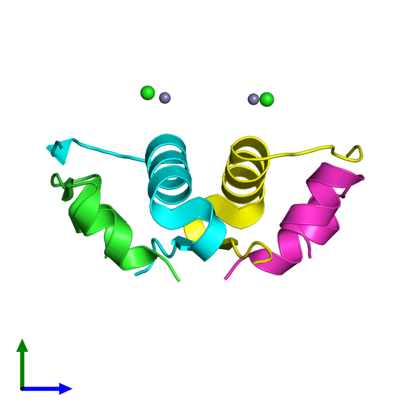<div class='caption-body'><ul class ='image_legend_ul'>The deposited structure of PDB entry 4f1b coloured by chain and viewed from the side. The entry contains: <li class ='image_legend_li'>2 copies of Insulin A chain</li><li class ='image_legend_li'>2 copies of Insulin B chain</li><li class ='image_legend_li'>2 non-polymeric entities<ul class ='image_legend_ul'><li class ='image_legend_li'>2 copies of ZINC ION</li><li class ='image_legend_li'>2 copies of CHLORIDE ION</li></ul></li></div>