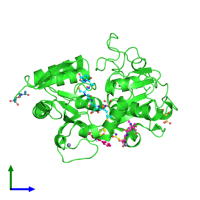 PDB 4for coloured by chain and viewed from the side.