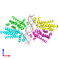 PDB 4gct coloured by chain and viewed from the front.
