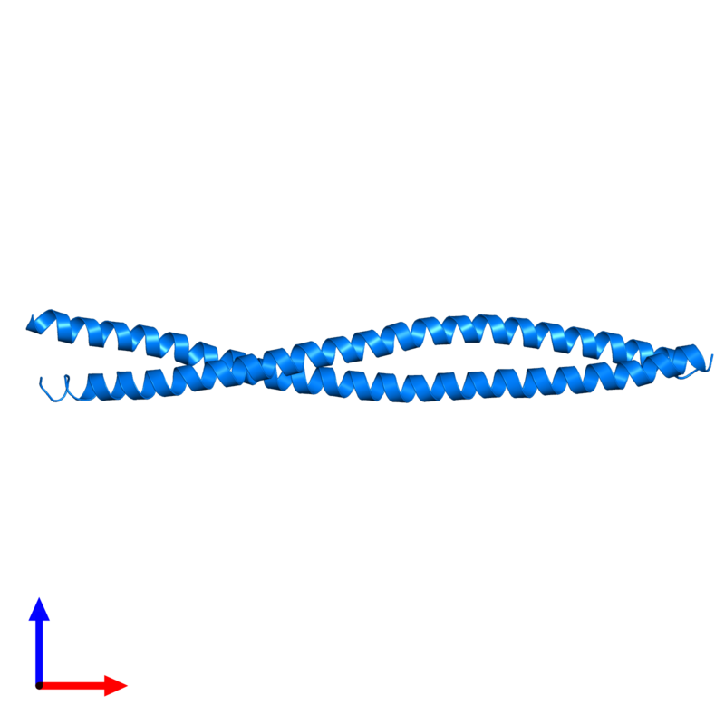 <div class='caption-body'>PDB entry 4h22 contains 2 copies of Leucine-rich repeat flightless-interacting protein 1 in assembly 1. This protein is highlighted and viewed from the front.</div>