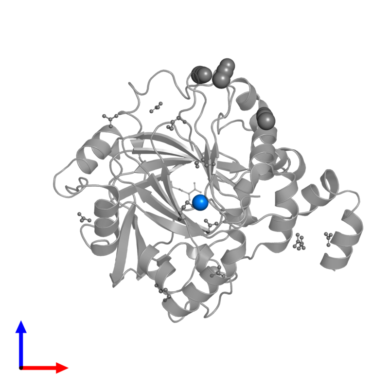 <div class='caption-body'>PDB entry 4hon contains 1 copy of NICKEL (II) ION in assembly 1. This small molecule is highlighted and viewed from the front.</div>