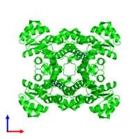 Tetrameric assembly 1 of PDB entry 4ixt coloured by chemically distinct molecules and viewed from the front.