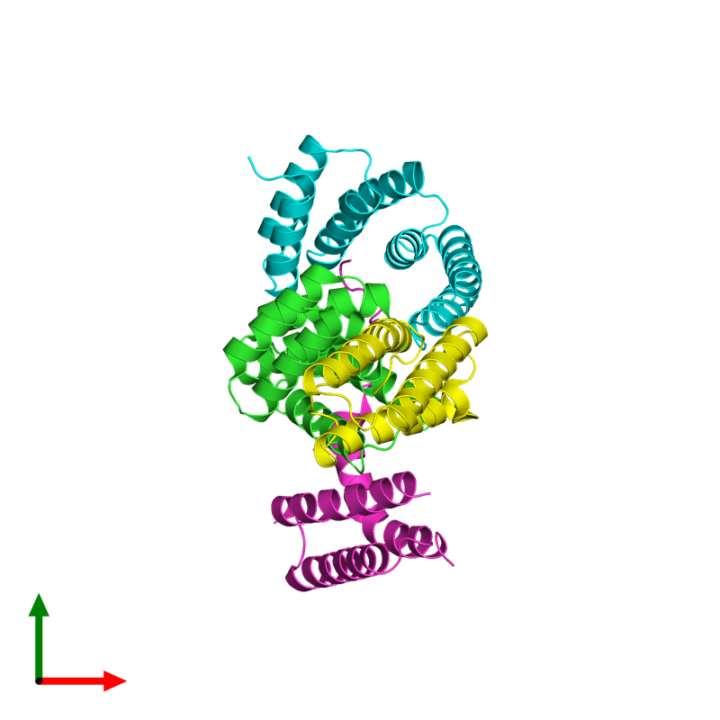 <div class='caption-body'><ul class ='image_legend_ul'>The deposited structure of PDB entry 4kbq coloured by chain and viewed from the top. The entry contains: <li class ='image_legend_li'>2 copies of E3 ubiquitin-protein ligase CHIP</li><li class ='image_legend_li'>2 copies of Heat shock cognate 71 kDa protein</li><li class ='image_legend_li'>There are no non-polymeric molecules</li></ul></li></ul></li></div>