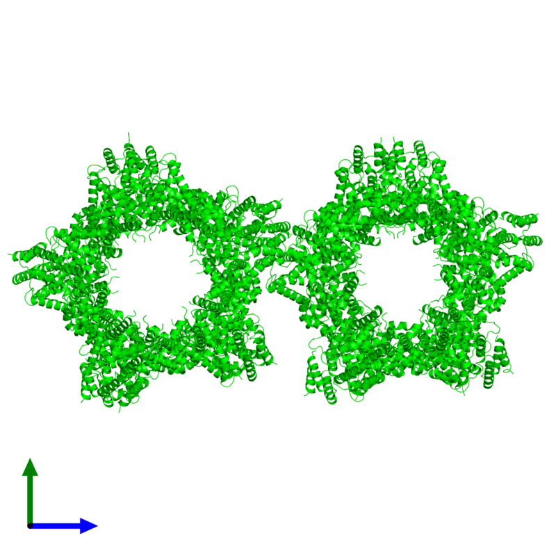 <div class='caption-body'><ul class ='image_legend_ul'>The deposited structure of PDB entry 4kk1 coloured by chemically distinct molecules and viewed from the front. The entry contains: <li class ='image_legend_li'>20 copies of Tuberous sclerosis 1 protein homolog</li><li class ='image_legend_li'>There are no non-polymeric molecules</li></ul></li></ul></li></div>