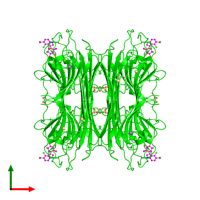 Tetrameric assembly 1 of PDB entry 4l8q coloured by chemically distinct molecules and viewed from the top.