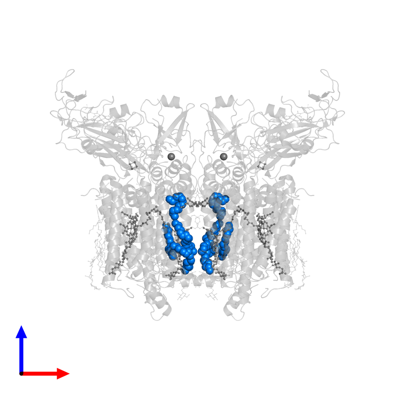 <div class='caption-body'>PDB entry 4ogq contains 8 copies of Octadecane in assembly 1. This small molecule is highlighted and viewed from the front.</div>