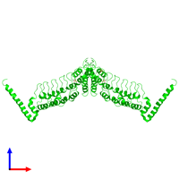 Dimeric assembly 2 of PDB entry 4ot9 coloured by chemically distinct molecules and viewed from the front.