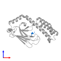 PDB 4po2 contains 1 copy of HSP70 substrate peptide in assembly 1. This protein is highlighted and viewed from the front.