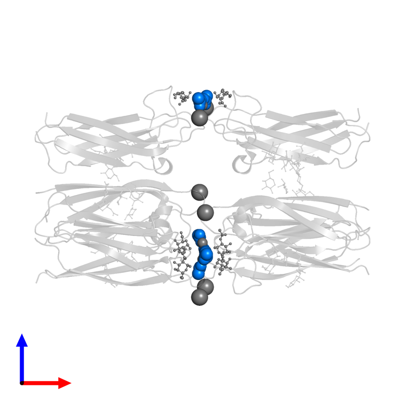 <div class='caption-body'>PDB entry 4q56 contains 6 copies of ACETATE ION in assembly 1. This small molecule is highlighted and viewed from the front.</div>