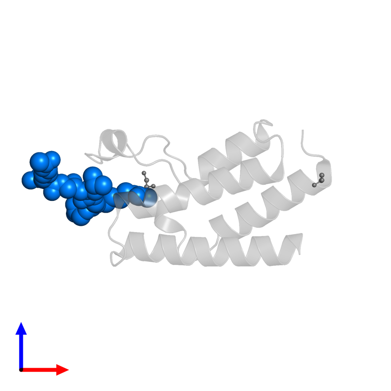 <div class='caption-body'>PDB entry 4qc3 contains 1 copy of diacetylated histone 4 peptide (H4K8acK12ac) in assembly 1. This protein is highlighted and viewed from the front.</div>