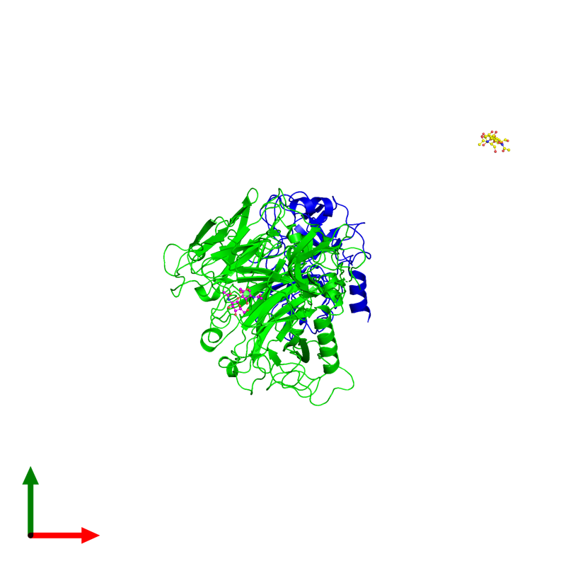 <div class='caption-body'><ul class ='image_legend_ul'> Dimeric assembly 1 of PDB entry 4qt8 coloured by chemically distinct molecules and viewed from the top. This assembly contains:<li class ='image_legend_li'>One copy of Macrophage-stimulating protein receptor beta chain</li><li class ='image_legend_li'>One copy of Hepatocyte growth factor-like protein beta chain</li><li class ='image_legend_li'>One copy of 2-acetamido-2-deoxy-beta-D-glucopyranose-(1-4)-2-acetamido-2-deoxy-beta-D-glucopyranose</li></ul></div>