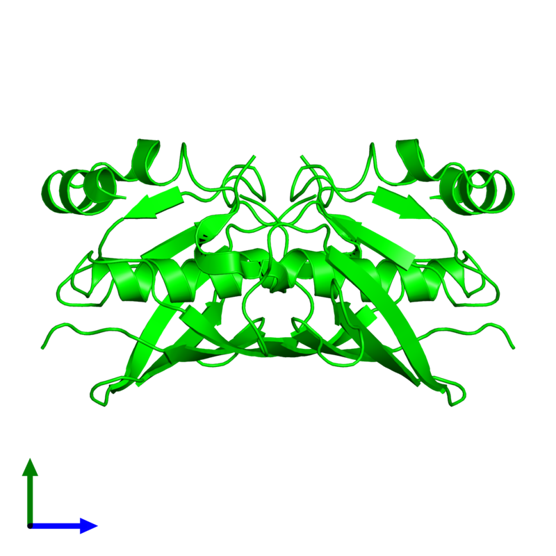 <div class='caption-body'><ul class ='image_legend_ul'> Dimeric assembly 1 of PDB entry 4rmm coloured by chemically distinct molecules and viewed from the side. This assembly contains:<li class ='image_legend_li'>2 copies of 4HBT domain-containing protein</li></ul></div>