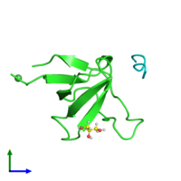 PDB 4rtz coloured by chain and viewed from the side.