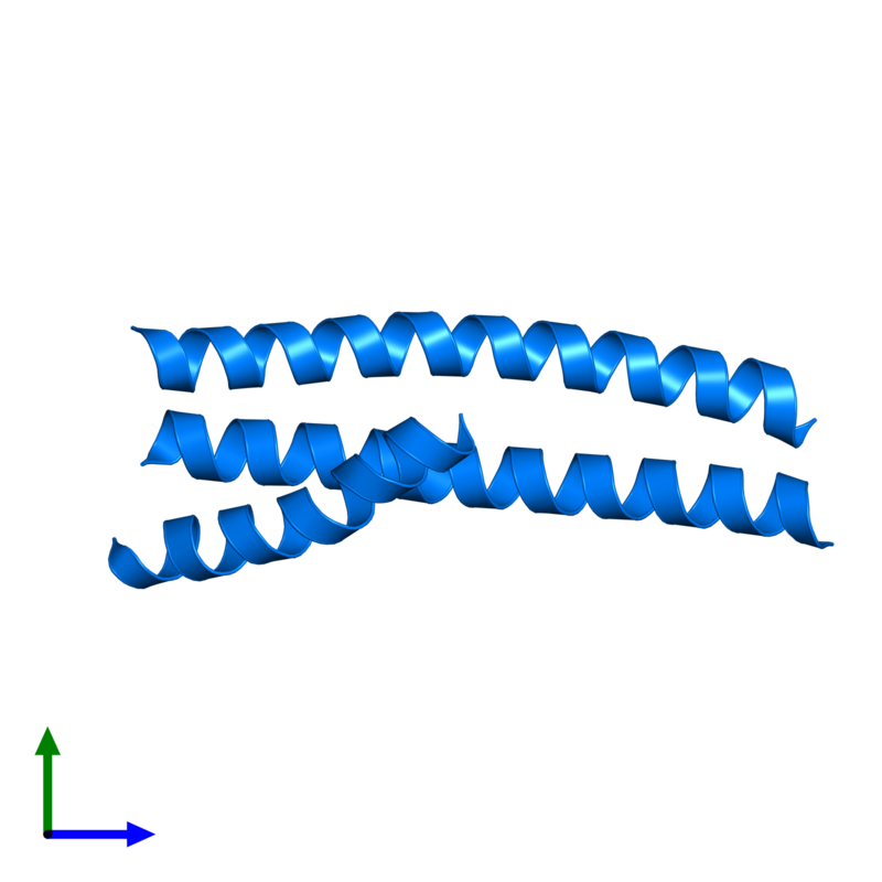 <div class='caption-body'>PDB entry 4s1x contains 3 copies of Truncated hemagglutinin in assembly 2. This protein is highlighted and viewed from the front.</div>