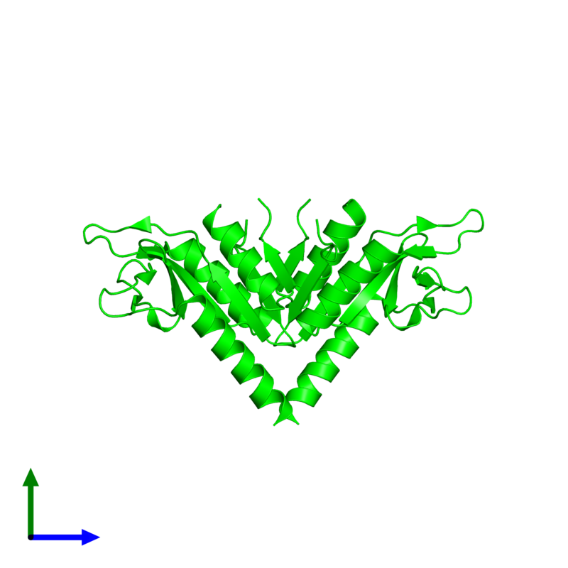 <div class='caption-body'><ul class ='image_legend_ul'> Dimeric assembly 1 of PDB entry 4tkk coloured by chemically distinct molecules and viewed from the side. This assembly contains:<li class ='image_legend_li'>2 copies of Holliday junction resolvase Hjc</li></ul></div>