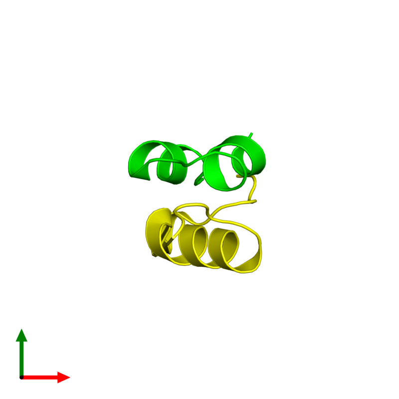 <div class='caption-body'><ul class ='image_legend_ul'> Dimeric assembly 1 of PDB entry 4ung coloured by chemically distinct molecules and viewed from the top. This assembly contains:<li class ='image_legend_li'>One copy of Insulin A chain</li><li class ='image_legend_li'>One copy of Insulin B chain</li></ul></div>