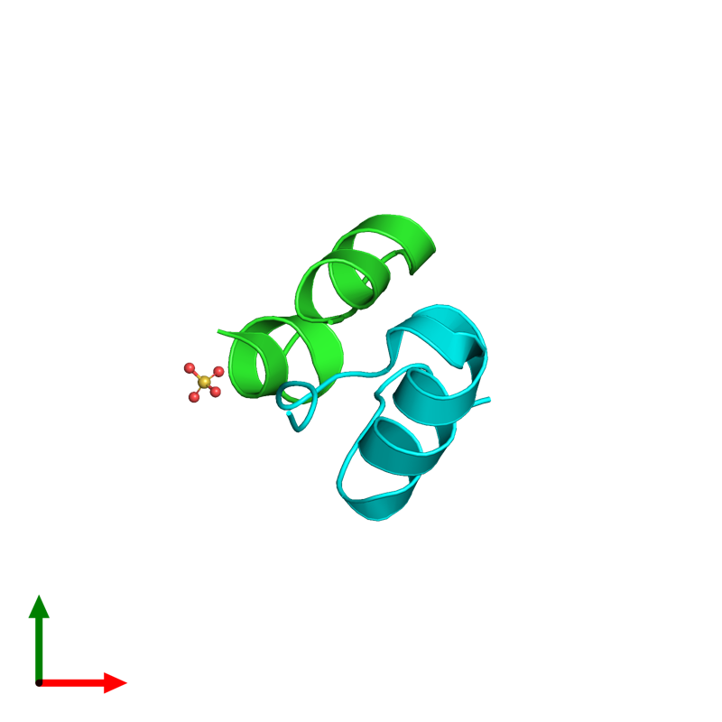 <div class='caption-body'><ul class ='image_legend_ul'>The deposited structure of PDB entry 4unh coloured by chain and viewed from the top. The entry contains: <li class ='image_legend_li'>1 copy of Insulin A chain</li><li class ='image_legend_li'>1 copy of Insulin B chain</li><li class ='image_legend_li'>There is 1 non-polymeric molecule<ul class ='image_legend_ul'><li class ='image_legend_li'>1 copy of SULFATE ION</li></ul></li></div>