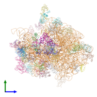 PDB 4v42 coloured by chain and viewed from the side.
