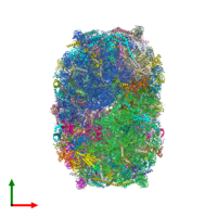 PDB 4v8p coloured by chain and viewed from the top.
