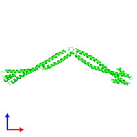 Dimeric assembly 1 of PDB entry 4xa6 coloured by chemically distinct molecules and viewed from the front.