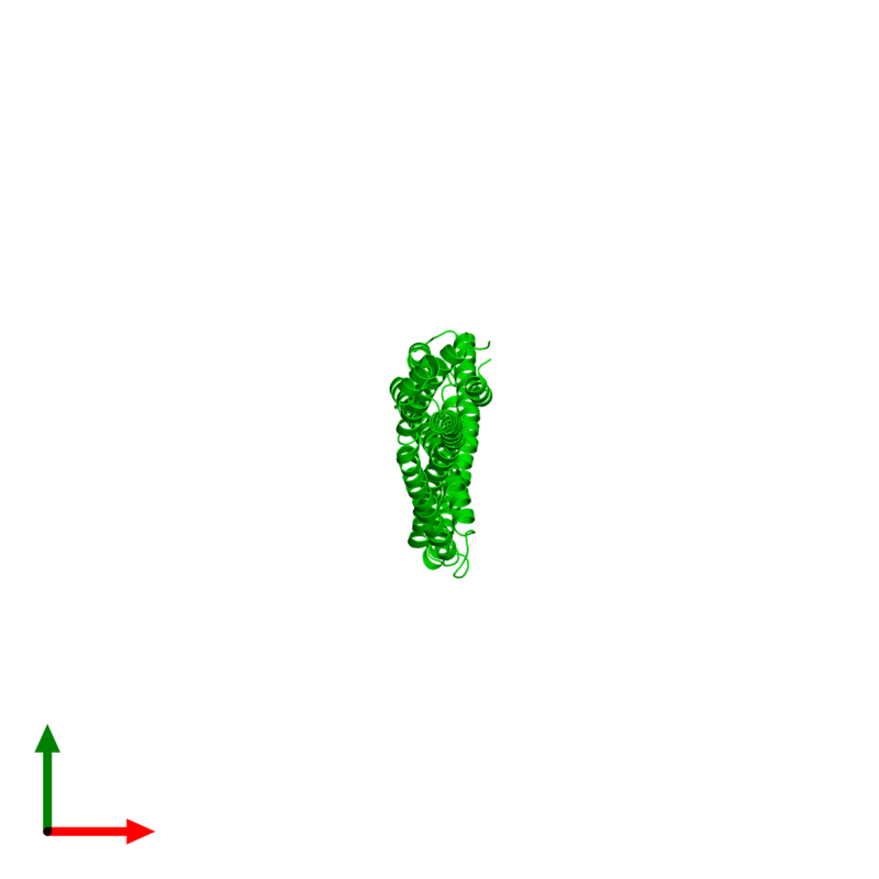 <div class='caption-body'><ul class ='image_legend_ul'> Dimeric assembly 1 of PDB entry 4xa6 coloured by chemically distinct molecules and viewed from the top. This assembly contains:<li class ='image_legend_li'>2 copies of Capsid assembly scaffolding protein - Microtubule-associated protein RP/EB family member 1 - Myosin-7 chimera</li></ul></div>
