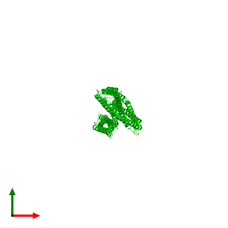 <div class='caption-body'><ul class ='image_legend_ul'>The deposited structure of PDB entry 4xa6 coloured by chemically distinct molecules and viewed from the top. The entry contains: <li class ='image_legend_li'>4 copies of Capsid assembly scaffolding protein - Microtubule-associated protein RP/EB family member 1 - Myosin-7 chimera</li><li class ='image_legend_li'>There are no non-polymeric molecules</li></ul></li></ul></li></div>