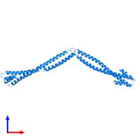 PDB 4xa6 contains 2 copies of Capsid assembly scaffolding protein - Microtubule-associated protein RP/EB family member 1 - Myosin-7 chimera in assembly 1. This protein is highlighted and viewed from the front.