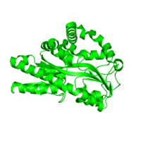 1 copy of CATH domain 3.40.190.170 (D-Maltodextrin-Binding Protein; domain 2) in TRAP dicarboxylate transporter, DctP subunit in PDB 4xeq.