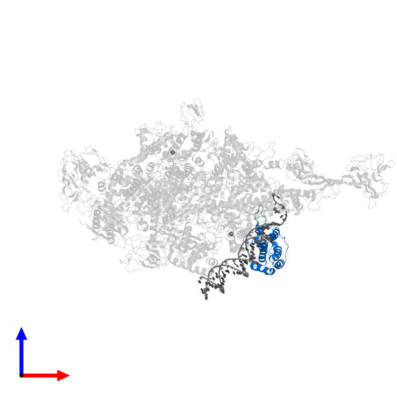 <div class='caption-body'>PDB entry 4xls contains 1 copy of CarD_TRCF domain-containing protein in assembly 1. This protein is highlighted and viewed from the front.</div>