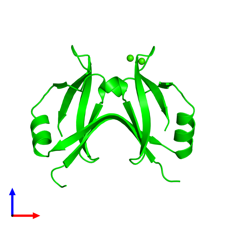 <div class='caption-body'><ul class ='image_legend_ul'> Dimeric assembly 1 of PDB entry 4yx1 coloured by chemically distinct molecules and viewed from the front. This assembly contains:<li class ='image_legend_li'>2 copies of Surface presentation of antigens protein SpaO</li><li class ='image_legend_li'>2 copies of CALCIUM ION</li></ul></div>