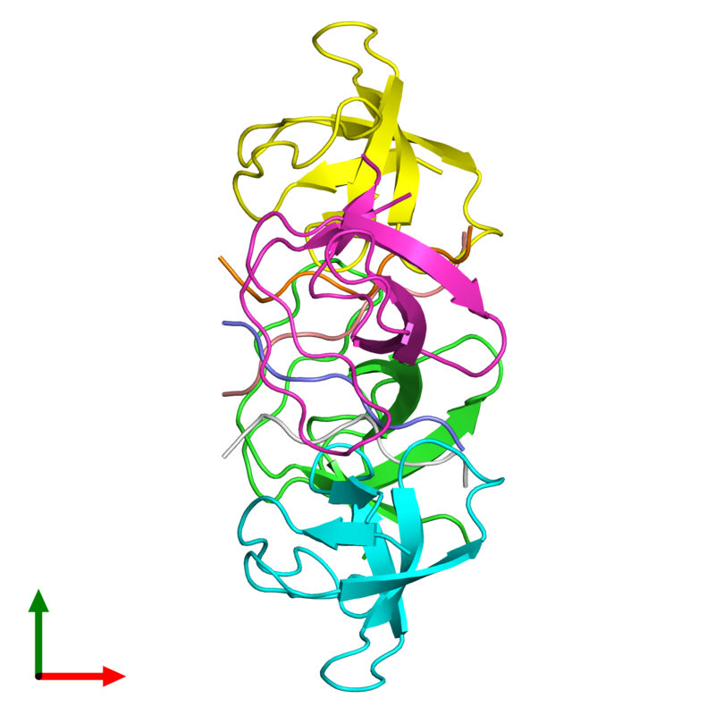<div class='caption-body'><ul class ='image_legend_ul'>The deposited structure of PDB entry 4znx coloured by chain and viewed from the top. The entry contains: <li class ='image_legend_li'>4 copies of Tyrosine-protein kinase Fyn</li><li class ='image_legend_li'>4 copies of APP12</li><li class ='image_legend_li'>There are no non-polymeric molecules</li></ul></li></ul></li></div>