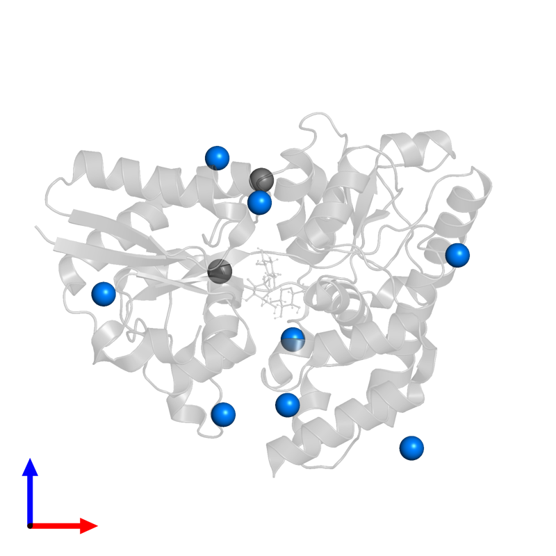 <div class='caption-body'>PDB entry 4zs9 contains 8 copies of MAGNESIUM ION in assembly 2. This small molecule is highlighted and viewed from the front.</div>