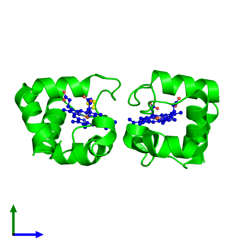<div class='caption-body'><ul class ='image_legend_ul'>The deposited structure of PDB entry 5b6q coloured by chemically distinct molecules and viewed from the side. The entry contains: <li class ='image_legend_li'>2 copies of Cytochrome c domain-containing protein</li><li class ='image_legend_li'>2 non-polymeric entities<ul class ='image_legend_ul'><li class ='image_legend_li'>2 copies of HEME C</li><li class ='image_legend_li'>1 copy of IMIDAZOLE</li></ul></li></div>