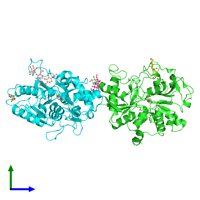PDB 5cry coloured by chain and viewed from the side.