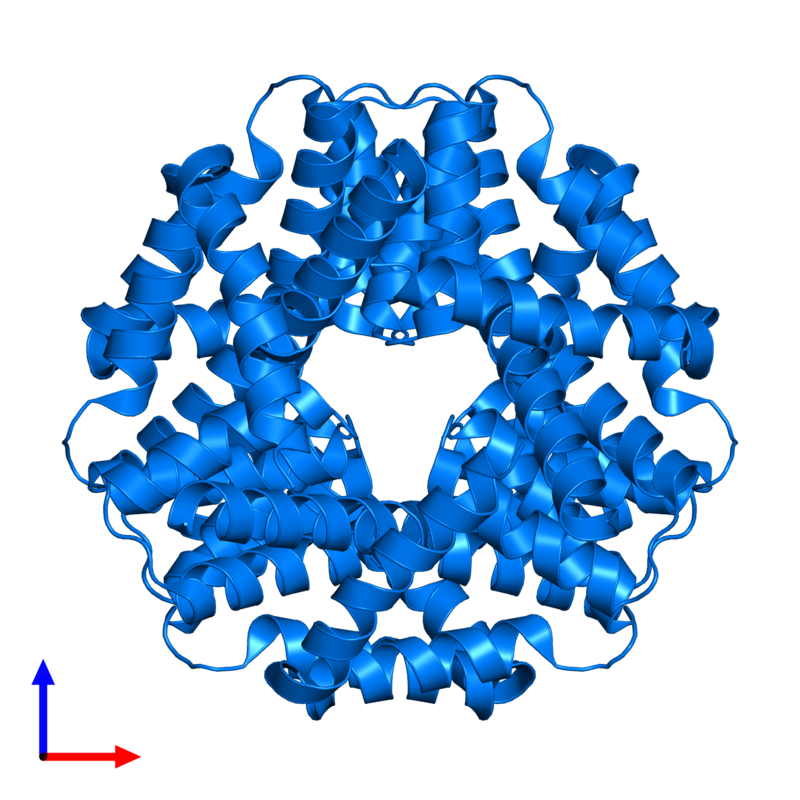 <div class='caption-body'>PDB entry 5dik contains 6 copies of CMD domain-containing protein in assembly 1. This protein is highlighted and viewed from the front.</div>