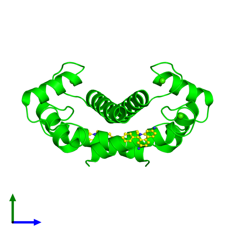 <div class='caption-body'><ul class ='image_legend_ul'> Dimeric assembly 1 of PDB entry 5er5 coloured by chemically distinct molecules and viewed from the side. This assembly contains:<li class ='image_legend_li'>2 copies of Protein S100-B</li><li class ='image_legend_li'>4 copies of CALCIUM ION</li><li class ='image_legend_li'>2 copies of ETHIDIUM</li></ul></div>