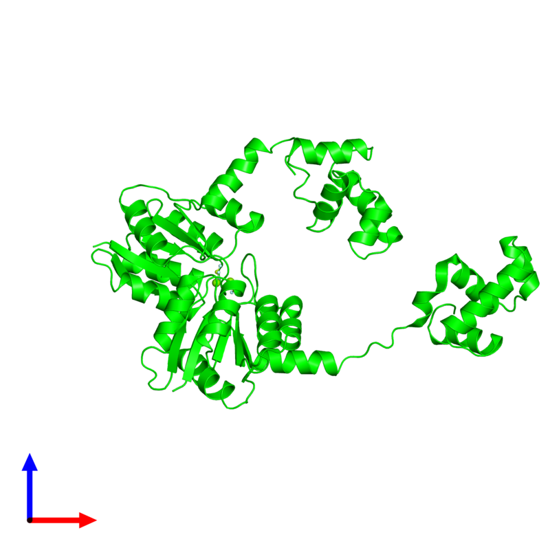 <div class='caption-body'><ul class ='image_legend_ul'> Dimeric assembly 1 of PDB entry 5hev coloured by chemically distinct molecules and viewed from the front. This assembly contains:<li class ='image_legend_li'>2 copies of Response regulator protein VraR</li><li class ='image_legend_li'>2 copies of MAGNESIUM ION</li><li class ='image_legend_li'>2 copies of BERYLLIUM TRIFLUORIDE ION</li></ul></div>