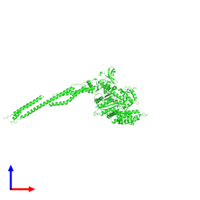 PDB 5i4e coloured by chain and viewed from the front.