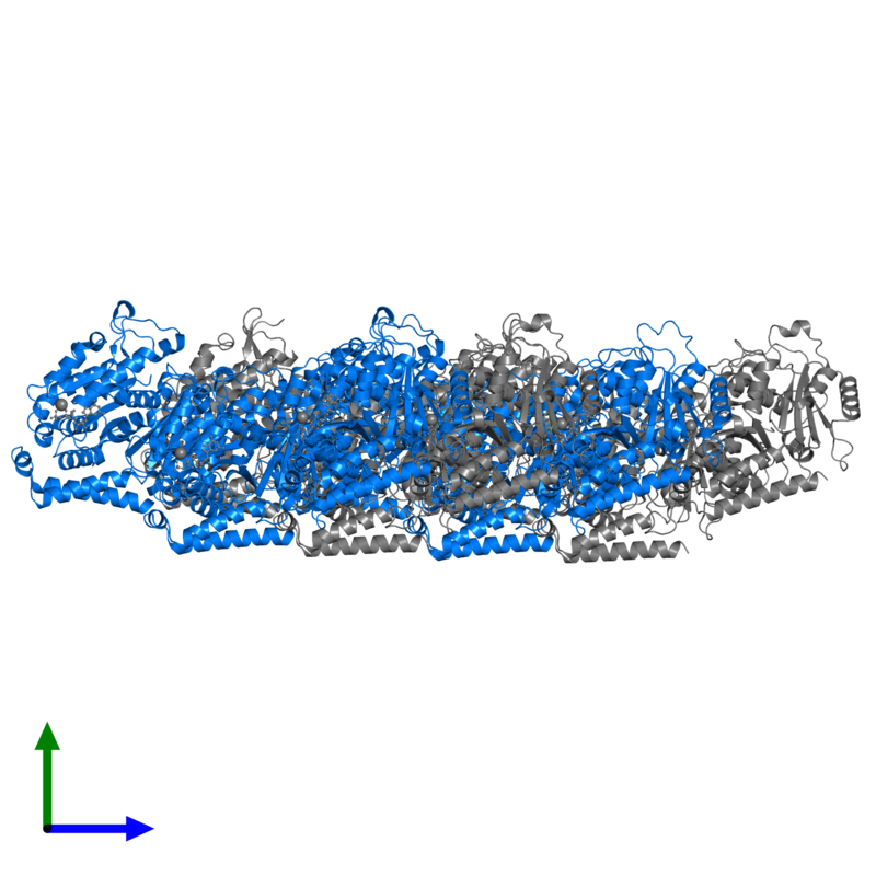 <div class='caption-body'>PDB entry 5jco contains 6 copies of Tubulin beta-3 chain in assembly 1. This protein is highlighted and viewed from the side.</div>