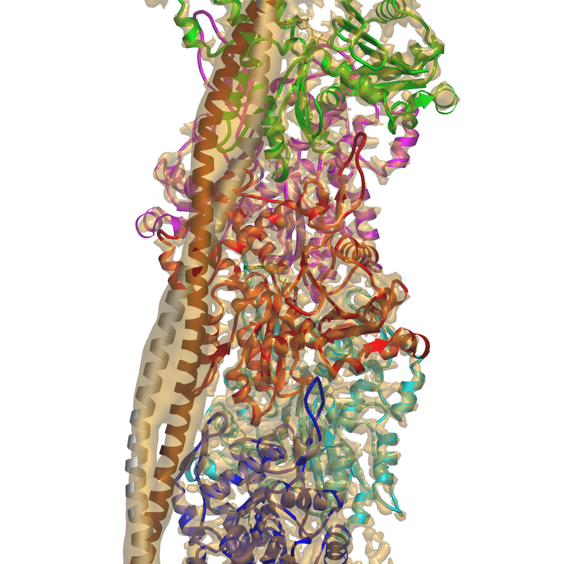 <div class='caption-body'>The location of PDB entry 5jlf within the volume of EMDB 8162.</div>
