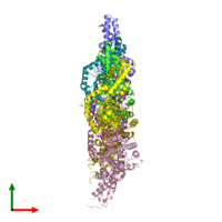 PDB 5l3s coloured by chain and viewed from the top.
