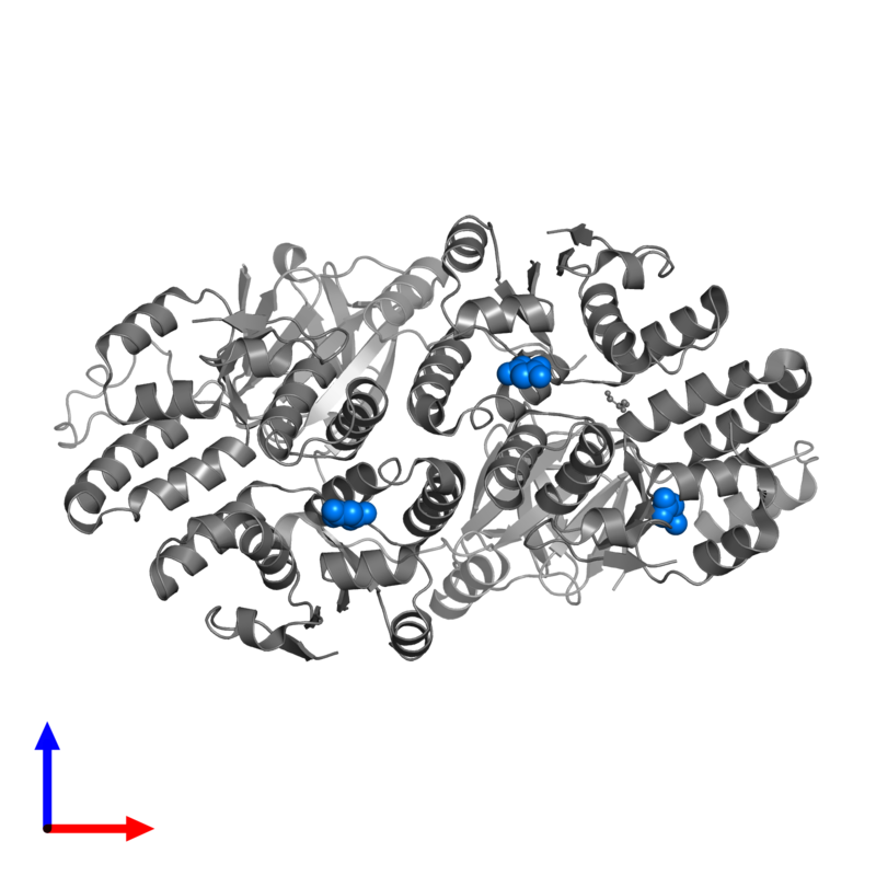 <div class='caption-body'>PDB entry 5l6m contains 3 copies of MALONATE ION in assembly 1. This small molecule is highlighted and viewed from the front.</div>