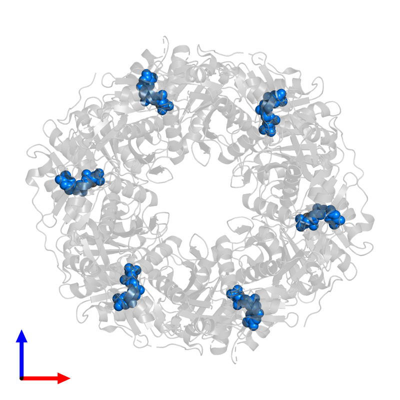 <div class='caption-body'>PDB entry 5lkm contains 6 copies of THYMIDINE-5'-DIPHOSPHATE in assembly 1. This small molecule is highlighted and viewed from the front.</div>