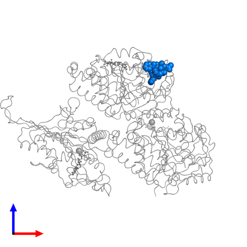 <div class='caption-body'>PDB entry 5m5i contains 1 copy of TAXOL in assembly 1. This small molecule is highlighted and viewed from the front.</div>