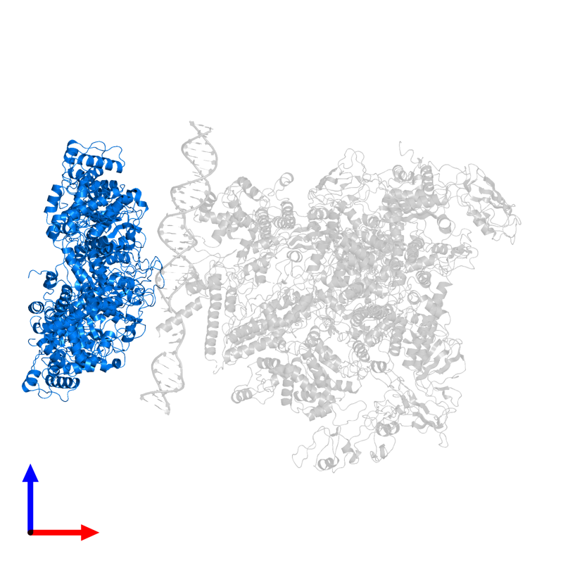 <div class='caption-body'>PDB entry 5nss contains 6 copies of Psp operon transcriptional activator in assembly 1. This protein is highlighted and viewed from the front.</div>